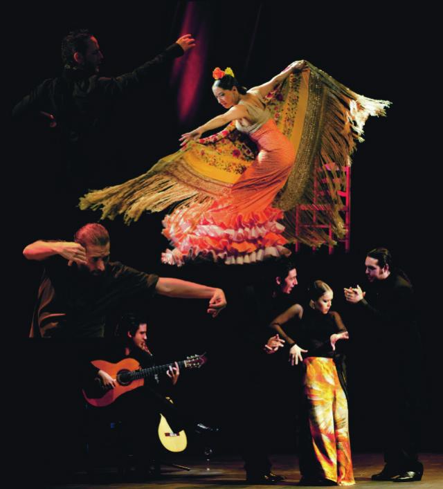 「flamenco festival in Tokyo」の画像